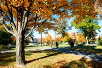 20151026-1_Fall Campus_31
