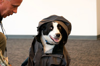 20141104-1_Augie in Coat