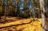20141003_Fall Photos
