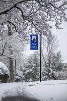 20170310-2 Snowy day on campus-20